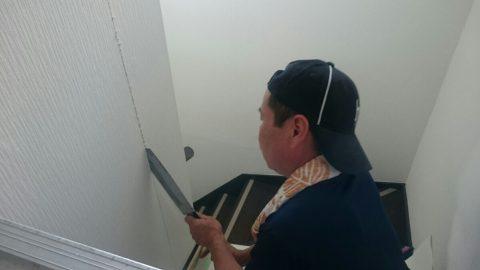 20160831_01トイレ増設