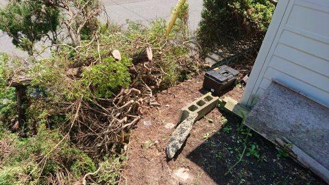 あけの平高階様生垣伐採完了_200528_0001